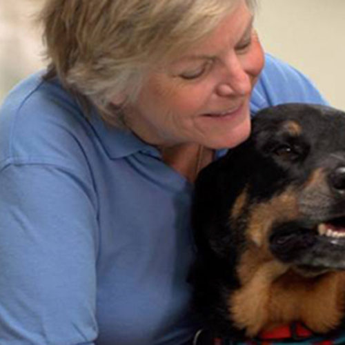 Therapy Dog Brings Joy
