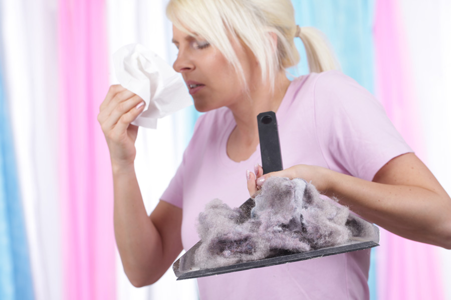 woman with dust pan full of dander